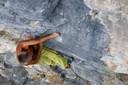 """""""After Work"""": il dopo-lavoro dei climbers."""