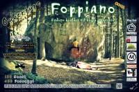 Foppiano Overture 2012